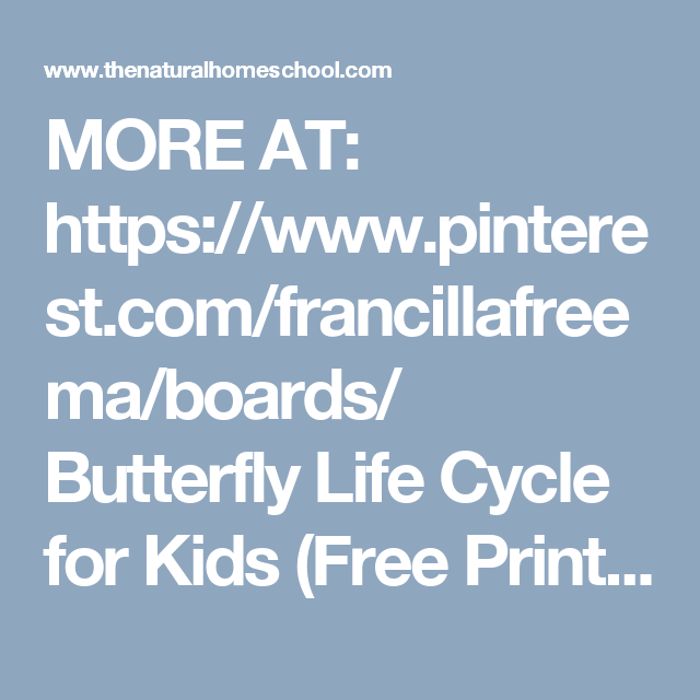 Butterfly Life Cycle for Kids (Free Printables | Butterfly life ...
