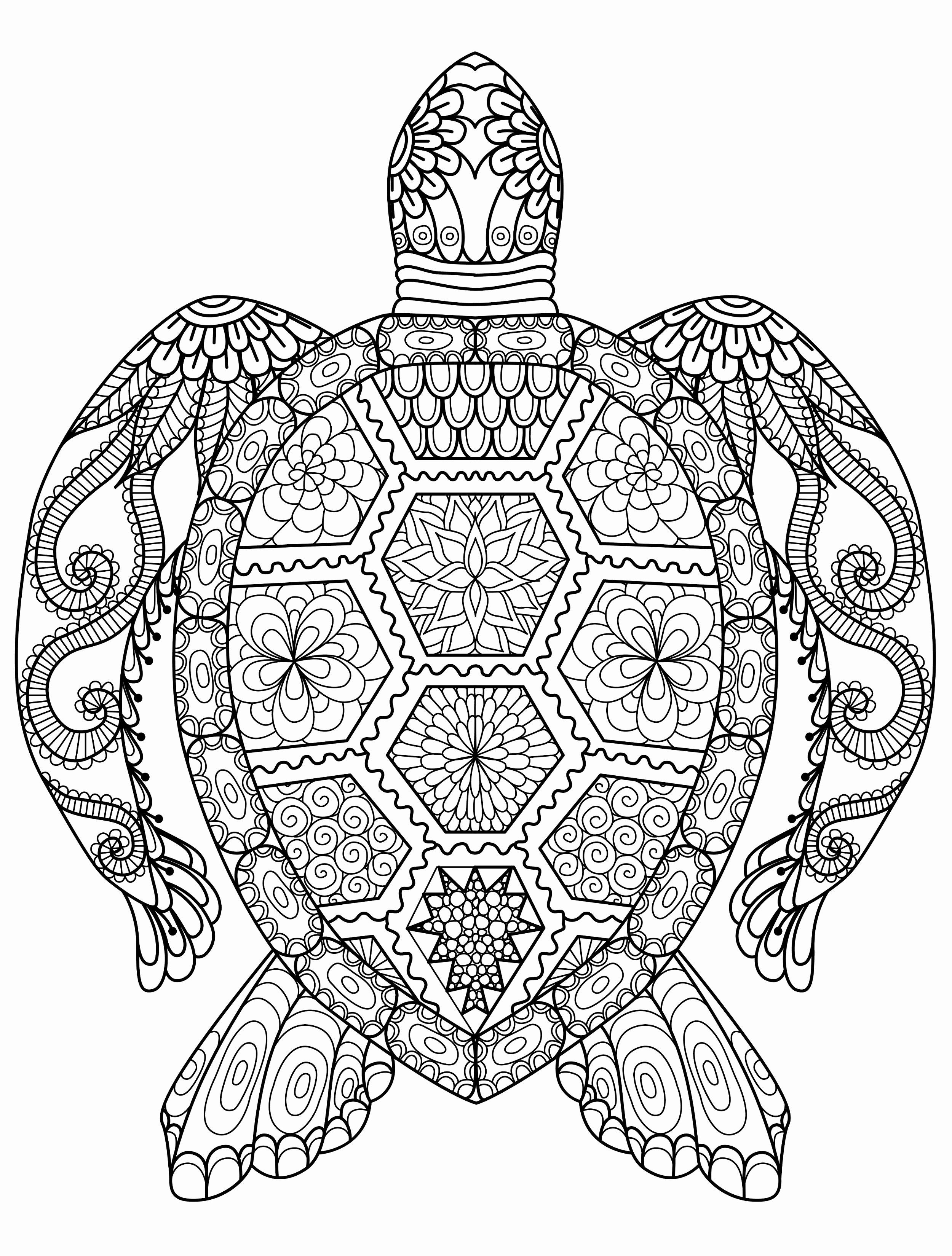 Adults Coloring Pages Printable