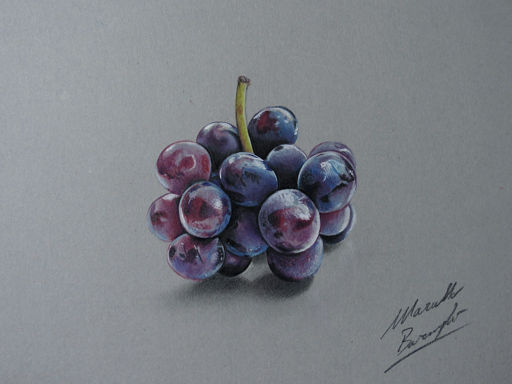 Drawing Grapes By Marcellobarenghiiantart On @deviantart