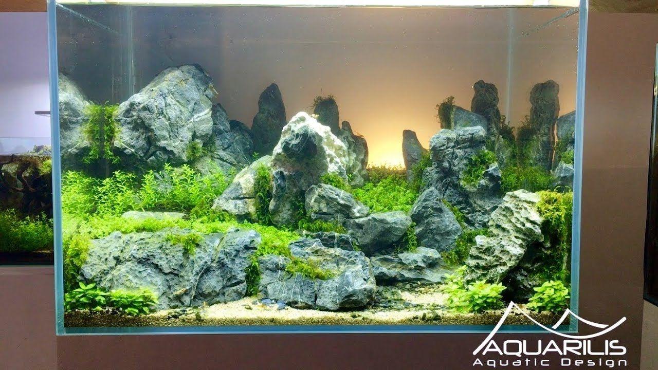 Aquascape Sunset Aquarium Decor By Lau Garcia Aquarilis