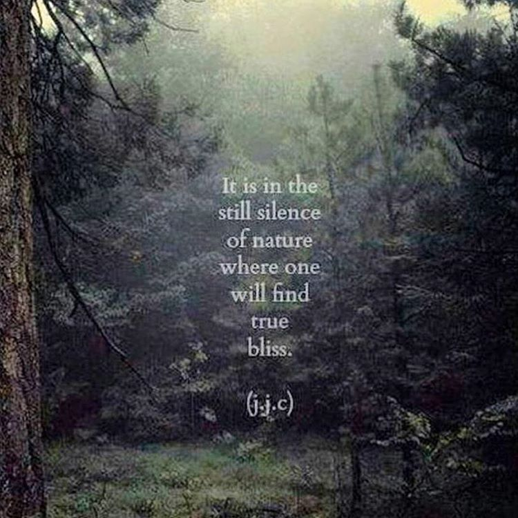 nature stillness bliss gratitude mountain quotes nature