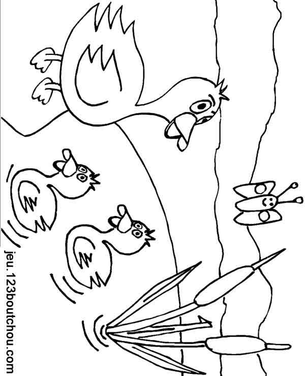 Coloriage enfant maman canard et ses canetons ont fait le grand plongeon maintenant ils s 39 en - Canard dessin facile ...
