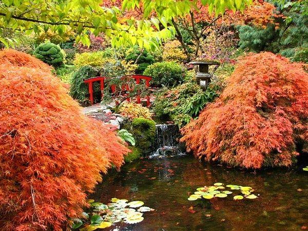 japanischer garten gestalten farbige pflanzenbeete rote brücke - chinesischer garten brucke