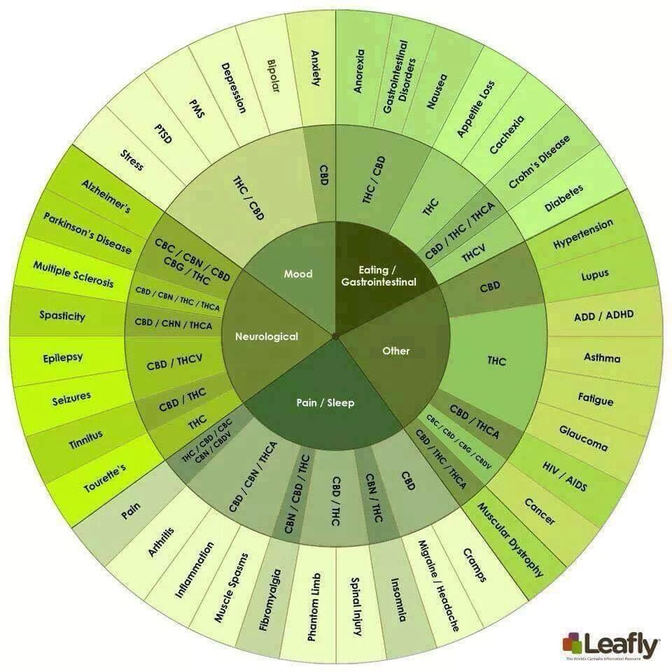 Pie chart of medical use also cannabis life pinterest rh