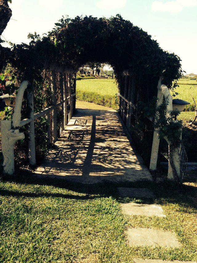 Tamayo farm bridge