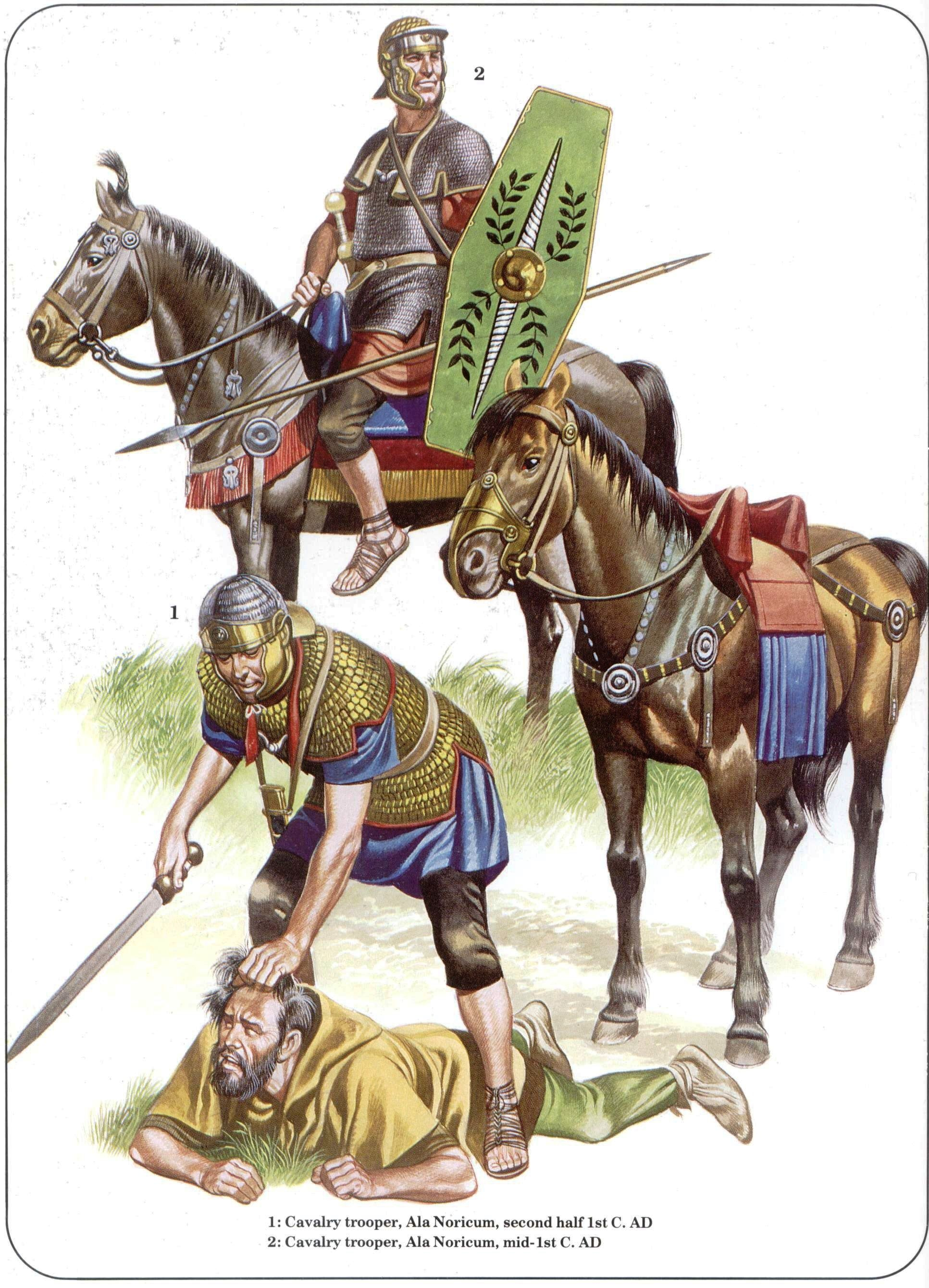 римский всадник картинка почему популярного многодетного