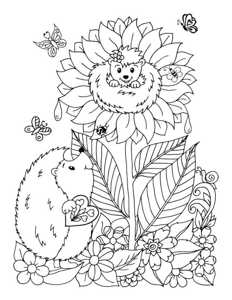 Free Coloring Page Hedgehogs Family Parenting Turtle Coloring Pages Coloring Pages Animal Coloring Pages