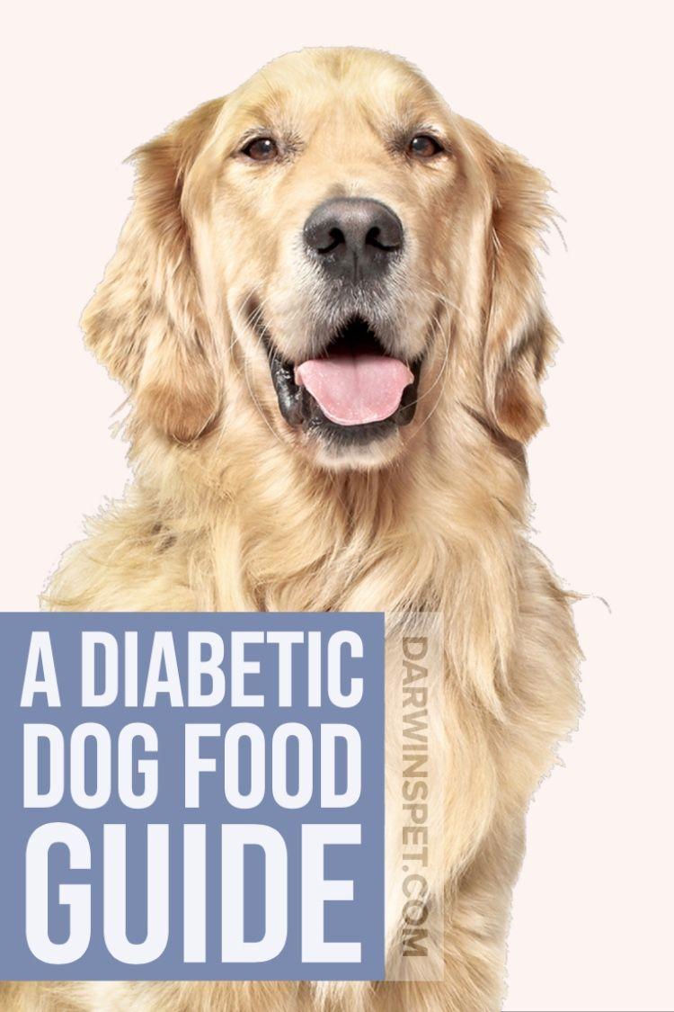 Home Diabetic dog food, Diabetic dog, Raw dog food recipes