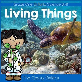 Living Things (Grade One Ontario Science) | | 1st Grade | | Turtle