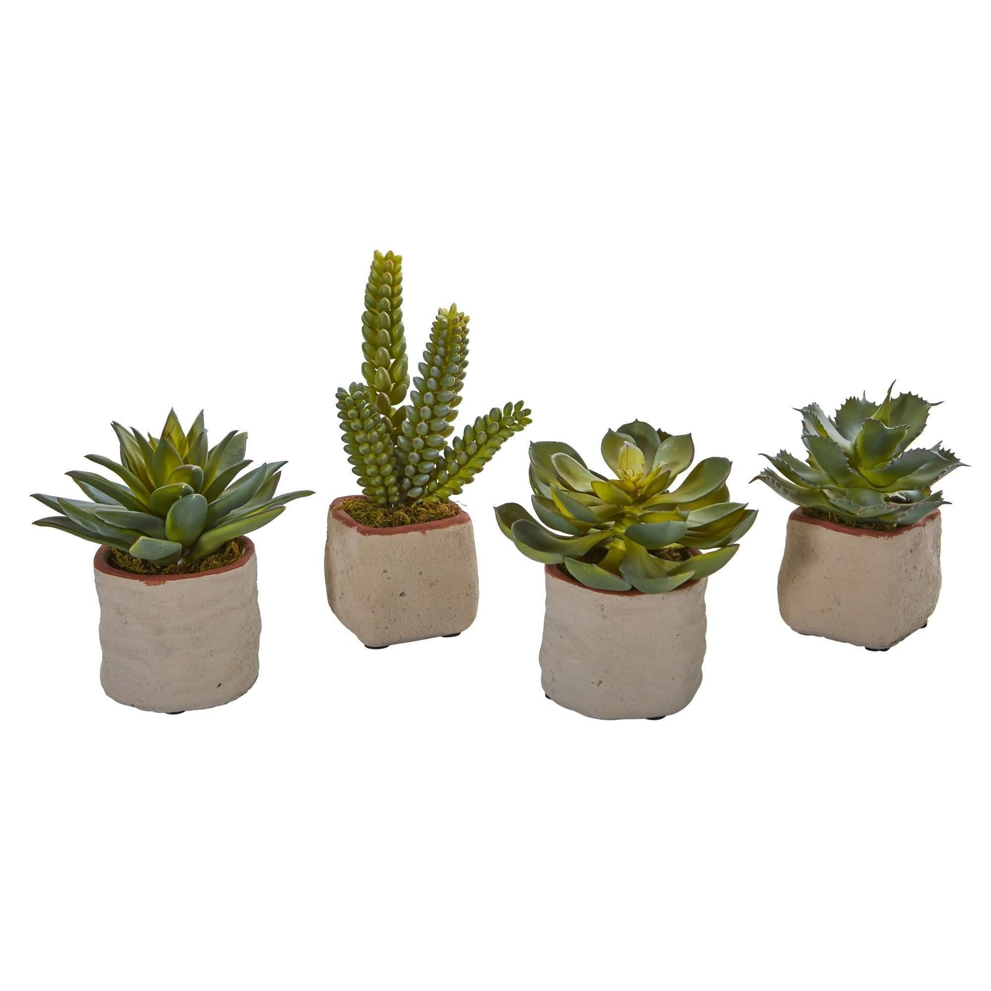 Mixed Succulent Artificial Plant Set Of 4 In 2020 Plants Artificial Plants Artificial Succulents