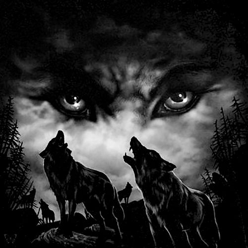 """There is a battle of two wolves inside us all. One is evil — he is anger, jealousy, greed, resentment, lies, inferiority and ego. The other is good — he is joy, peace, love, hope, humility, kindness, empathy and truth. The wolf that wins? The one you feed.""  Cherokee saying."