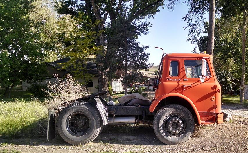 1970 Loadstar CO-1800 | BinderPlanet | International Trucks