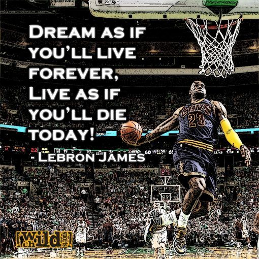 Sports Quotes Extreme Sports Quote  Cool Quotes  Pinterest  Sport Quotes And .