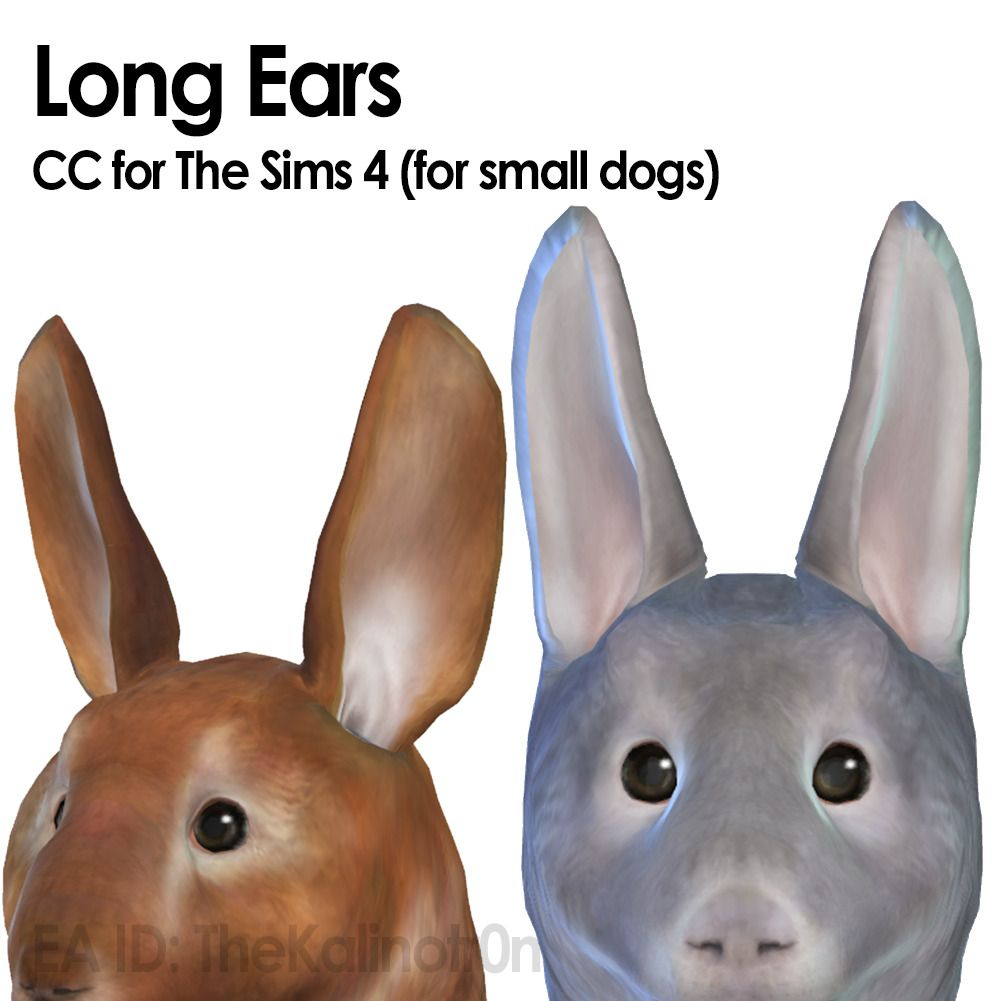 Kalino New rabbit CC for your small dogs Long Ears
