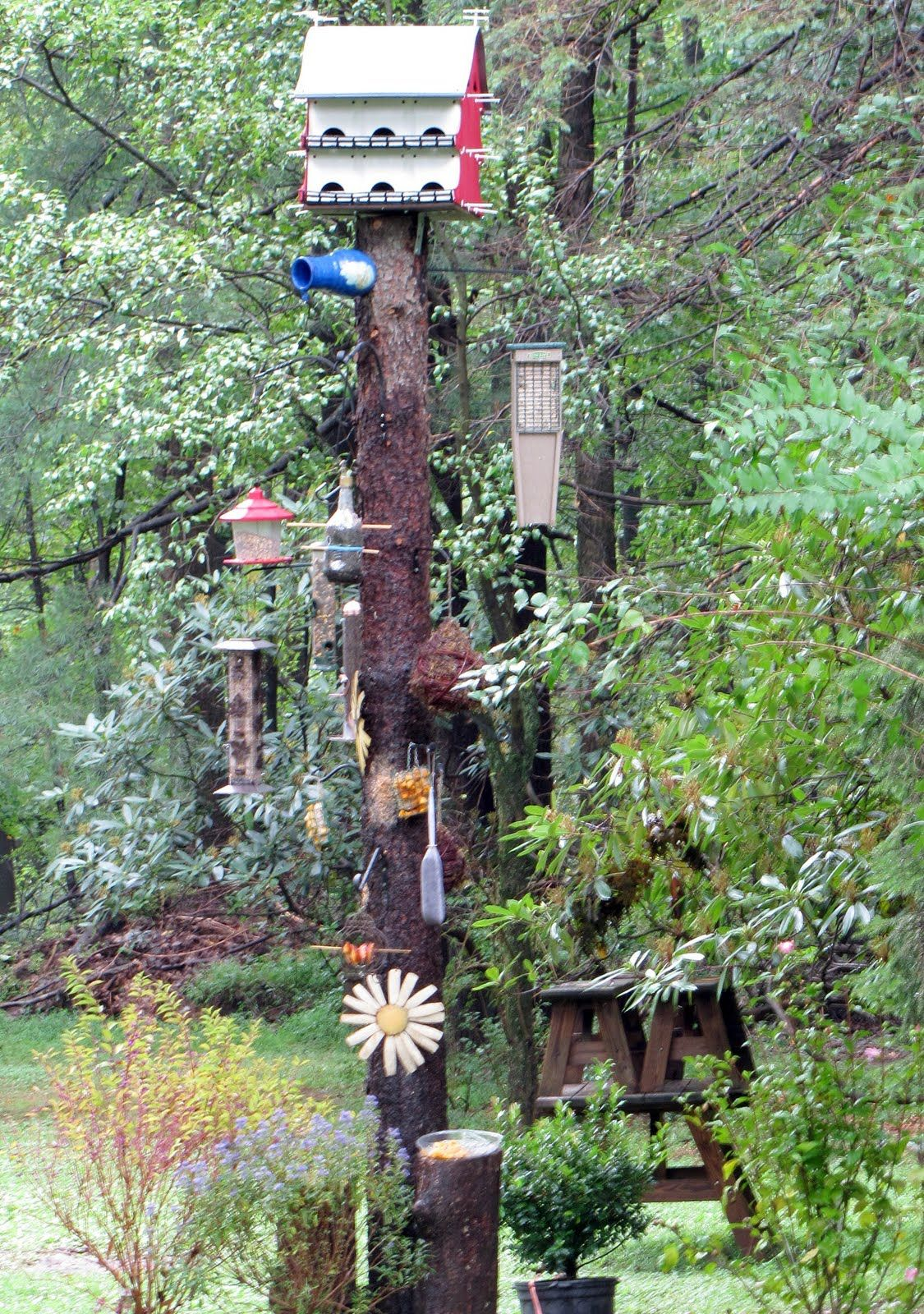 tree stump ideas | Tranquil Acres of Alexandria: The ...