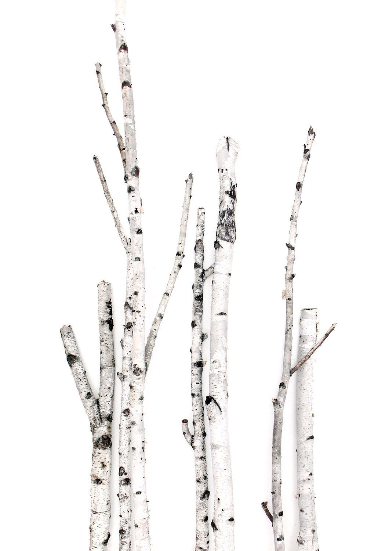 black and white on white (STILL)