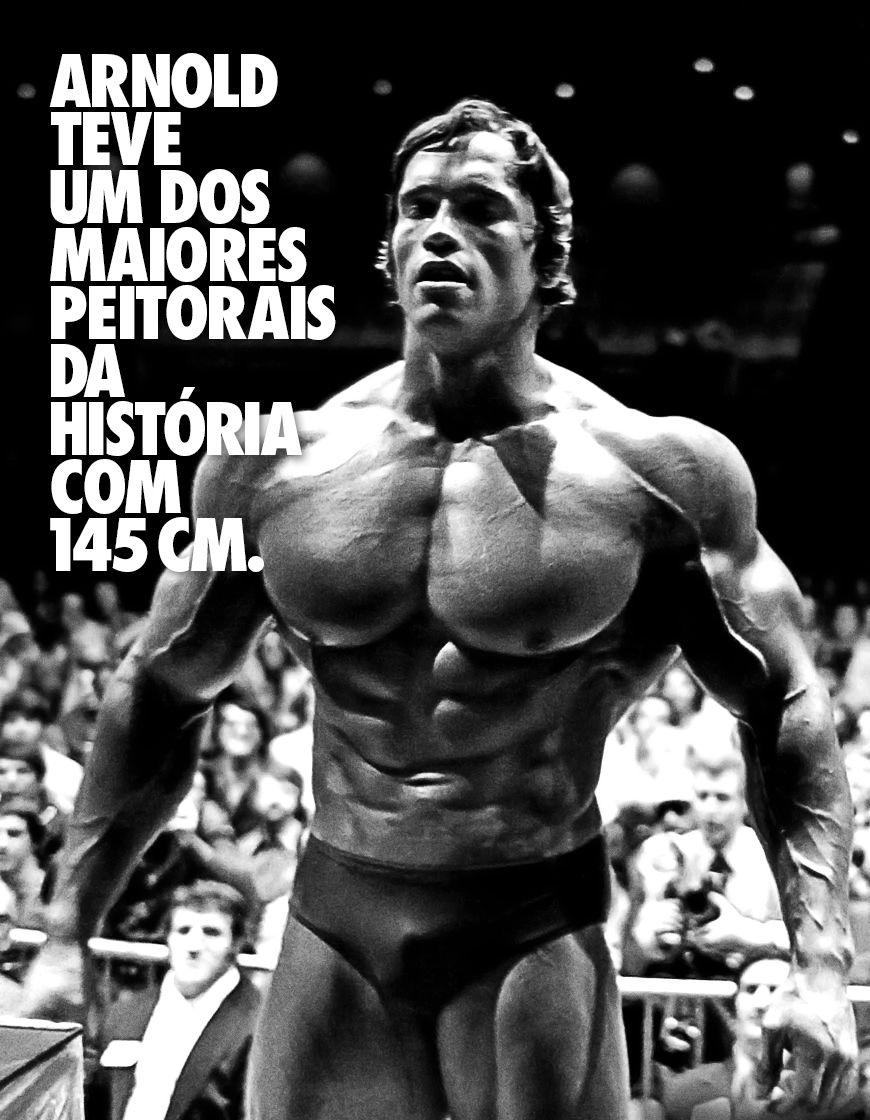 Arnold Schwarzenegger é Antes De Tudo Um Rato De Academia