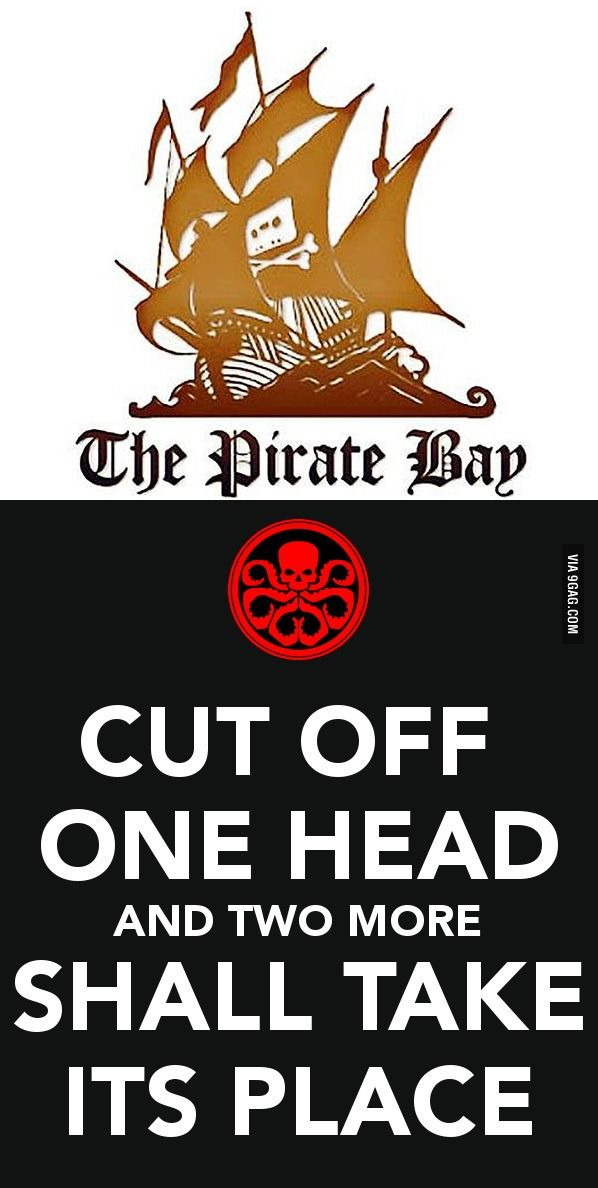 My First Thought On Hearing The Pirate Bay Was Shut Down Pirate Bay Best Funny Pictures Thoughts