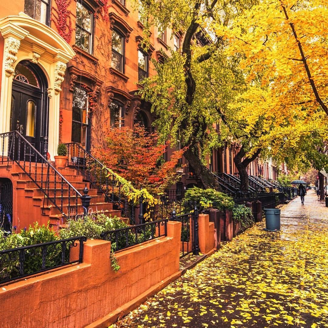 Autumn in Carroll Gardens, Brooklyn, NYC #autumninnewyork