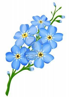 Google Image Result for http://us.123rf.com/400wm/400/400/Loopall/Loopall0903/Loopall090300017/4513004-branch-of-blue-forget-me-not-flowers-isolated--vector-illustration.jpg