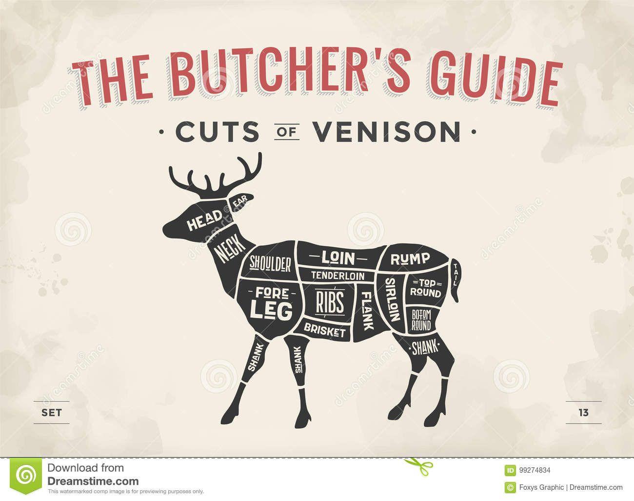 cut of meat set poster butcher diagram, scheme venison Diagram Of Moose Cuts diagram of moose cuts wiring diagram