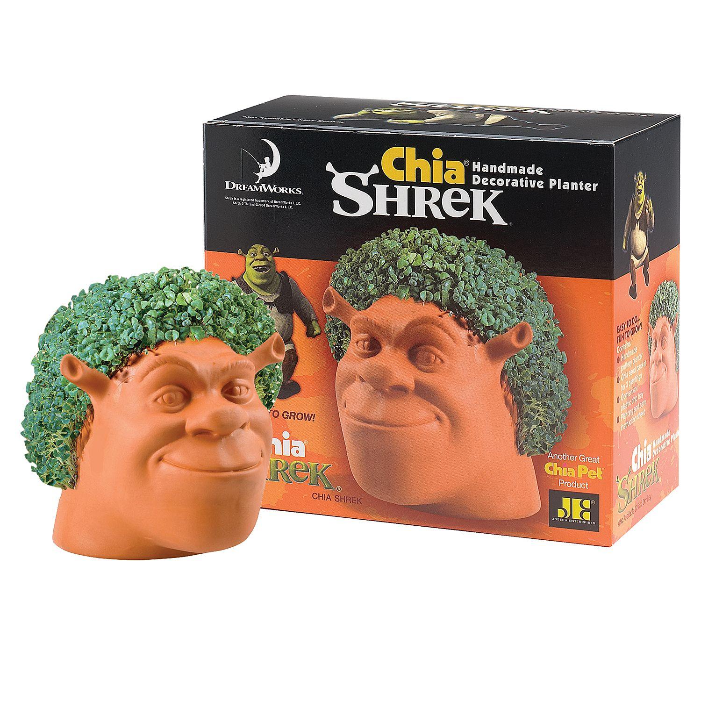 Chia Shrek Chia Pet Shrek Chia