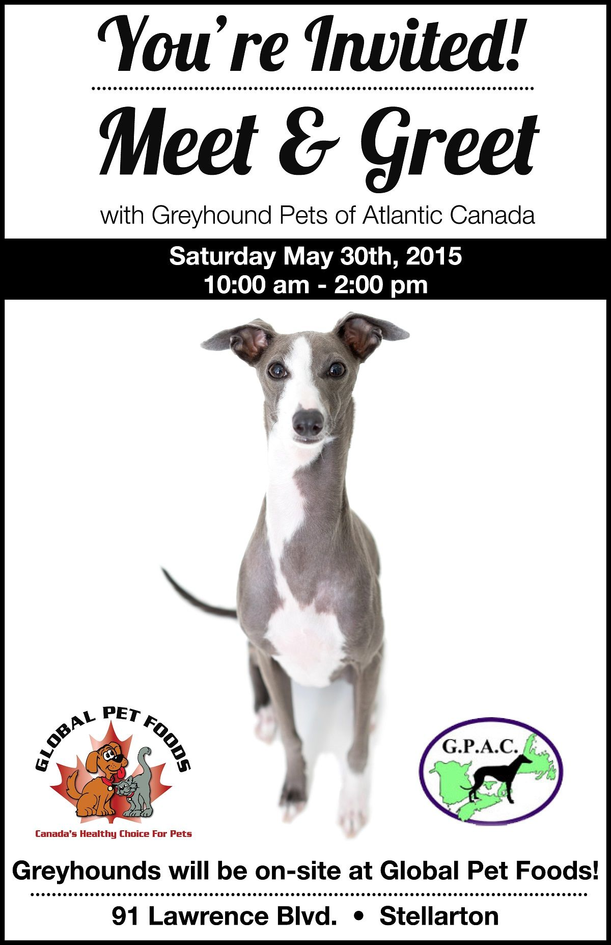 Meet Greet With Greyhound Pets Of Atlantic Canada At The Global Pet Foods Store In Stellarton Nova Scotia On Saturday May Food Animals Pet Food Store Pets