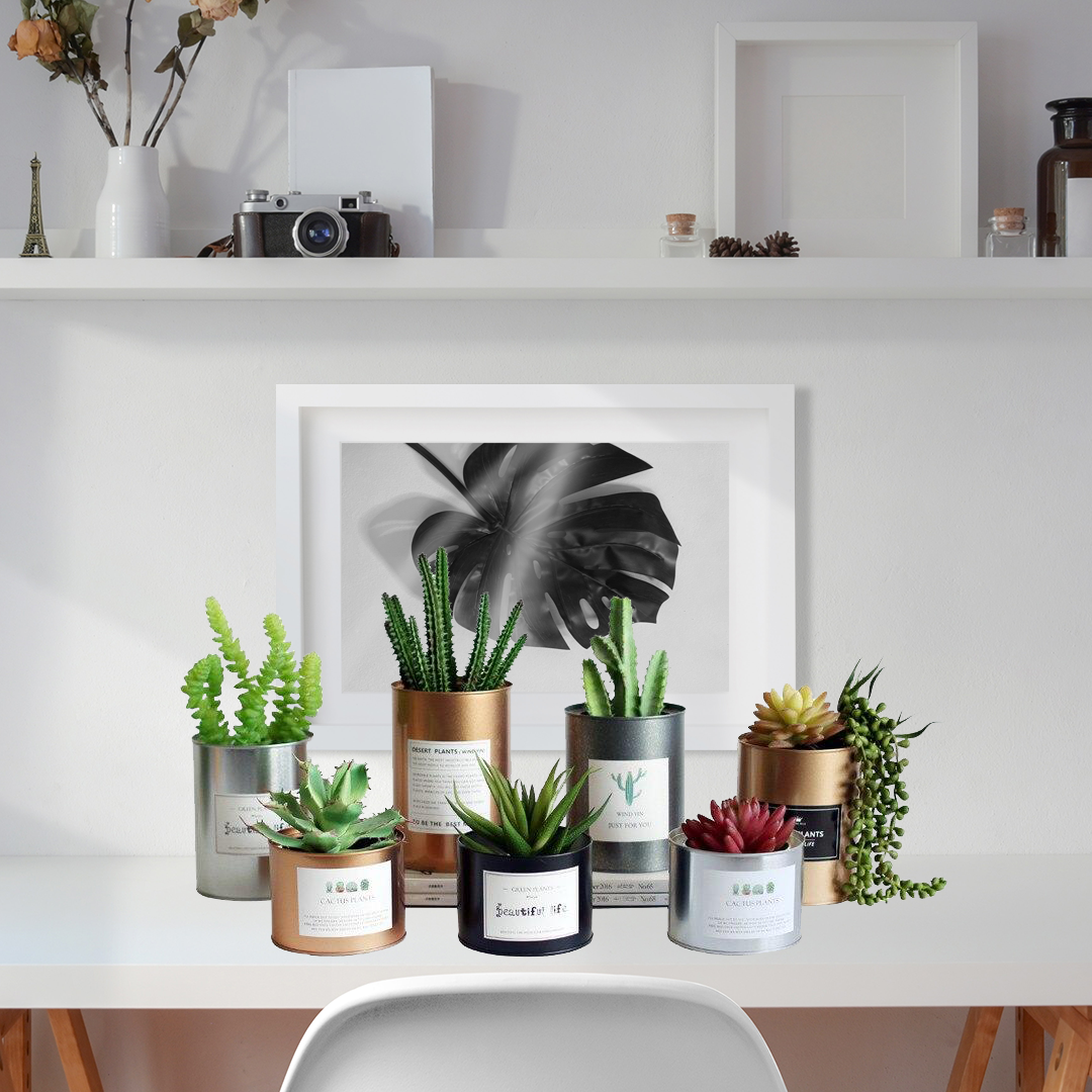 A little green never hurt nobody and will undoubtedly improve your room's climate. Give your plants a cool new home with these metal tin cans that have that vintage / retro / boho look.  #houseplantclub #plantsmakepeoplehappy #houseplants #indoorplants #plants #urbanjungle #indoorplant #plantlife #urbanjunglebloggers #plantlove #cactus #tanamanhias #sukulen #plant #yogyakarta #kaktusjogja #tanamanruang #kaktus #bellaspina #pothias #homedecor #greenthumb #indoorjungle #tin