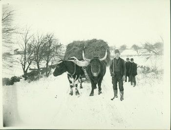 Search Results — Historic New England 1880's York, Maine, work goes on in the snow