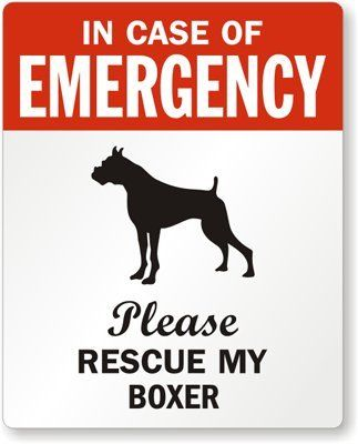 In Case Of Emergency Please Rescue My Boxer Adhesive Si Boxer Dogs Boxer Love Boxer