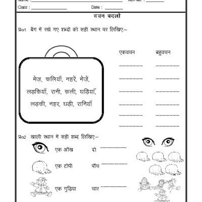 Hindi Grammar worksheet, Hindi worksheet, Language worksheet ...