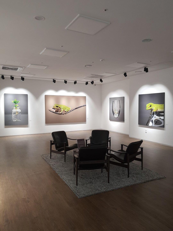 [SOLO SHOW] 13 Nov - 15 Dec.🌿 HobanArtrium, Gwangmyeong, South Korea.  Closed on Mondays.  #김영성 #극사실 #식물 #잡초 #극사실주의 #YoungsungKim #Hyperrealism #hyperrealistic #oil #painting #drawing #contemporaryart #art #handpainted #environment #climatechange #thankyoupatrons #museum #botanical #grass #experiment #weeds #experimental #개인전 #호반아트리움 #광명역 #hobanartrium #gwangmyeongstation #soloshow