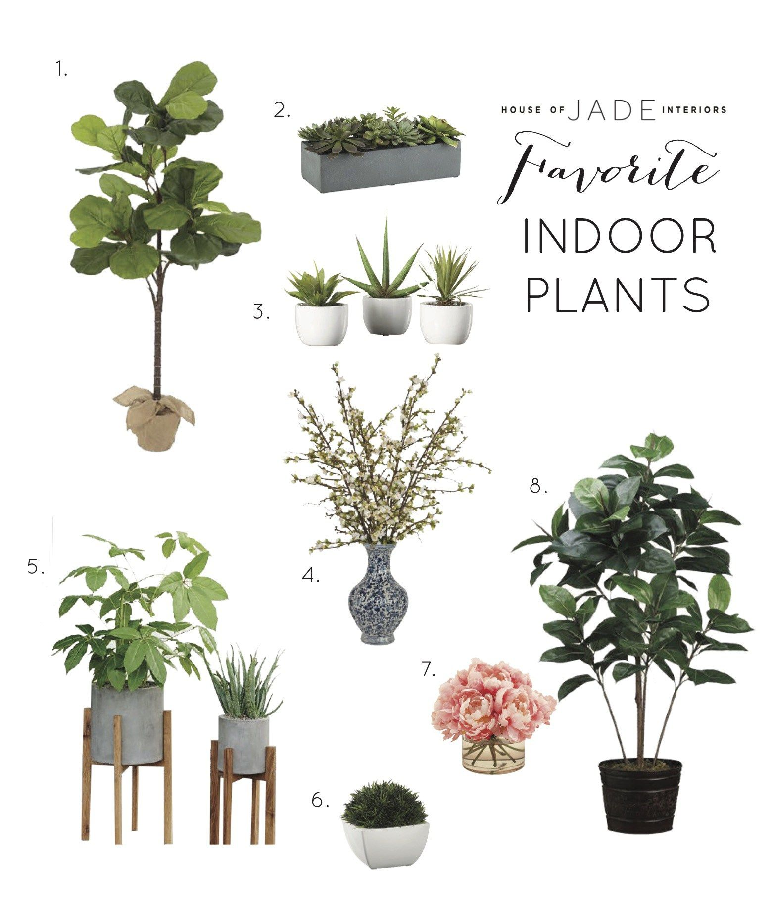 Tips for decorating with real and faux plants house of jade