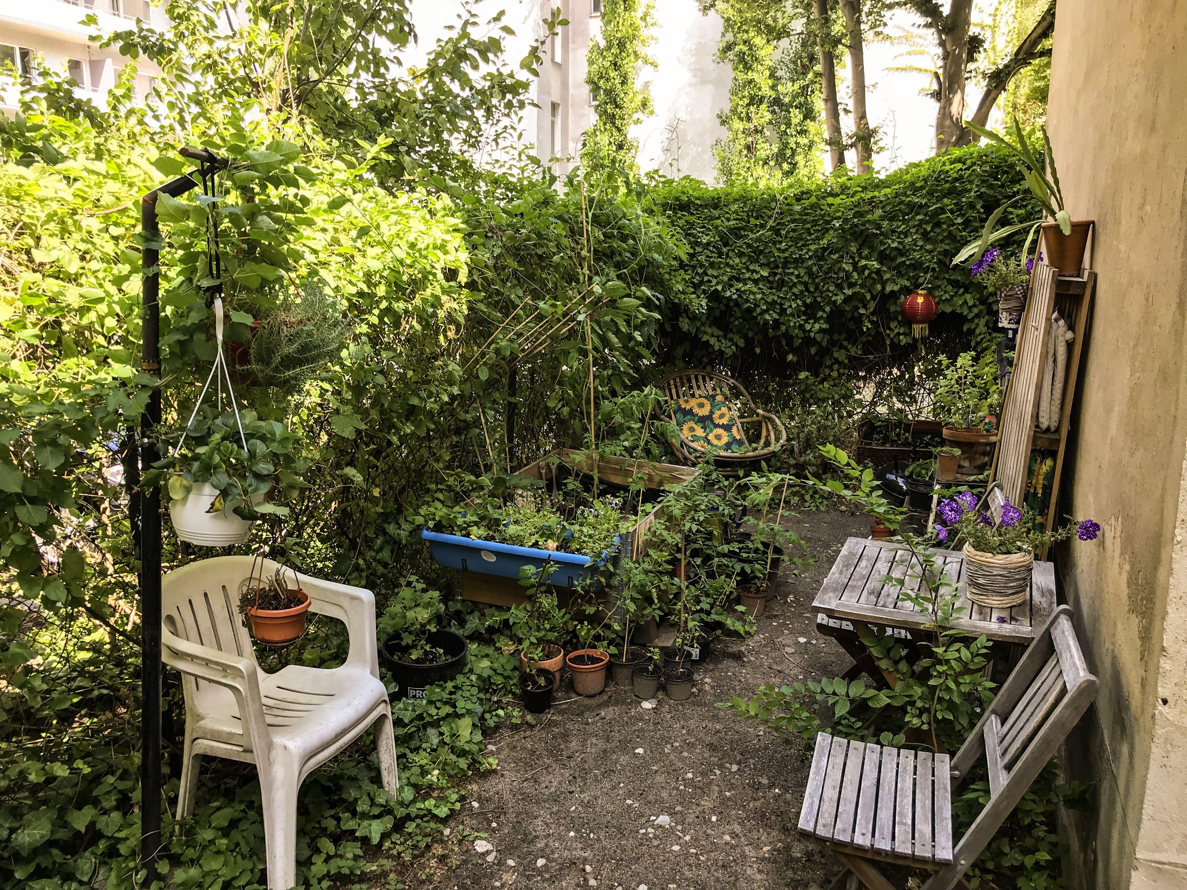 Gartenparadies In Der Grossstadt Gartenparadies Garten Bepflanzung