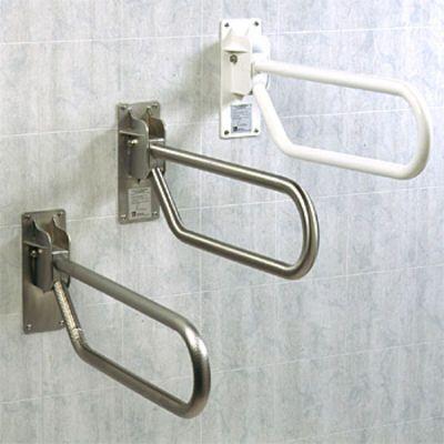 Handicap Showers, ADA Showers, Stair lifts, Barrier Free Shower ...