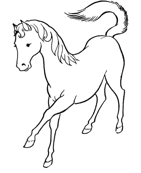 Horse Coloring Pages Easy Horse Coloring Pages Kids 600x734px