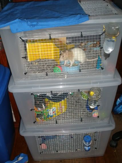 Tub Cages Great Or Terrible Rat Cage Pet Rat Cages Hamster Habitat