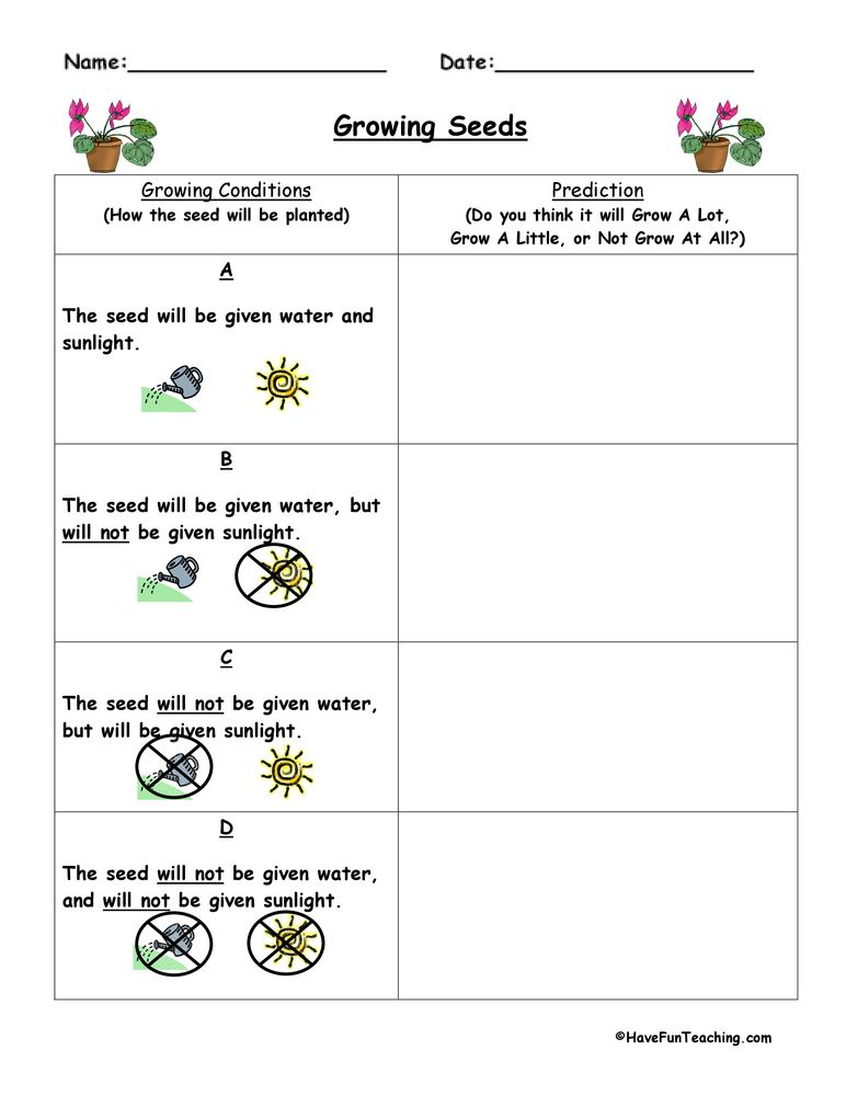 Inference Worksheets, Inference Worksheet, Free Inference Worksheets ...