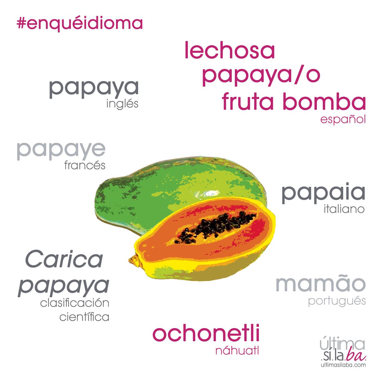 La palabra papaya proviene del maya p apay ya 39 que for De que lengua proviene la palabra jardin