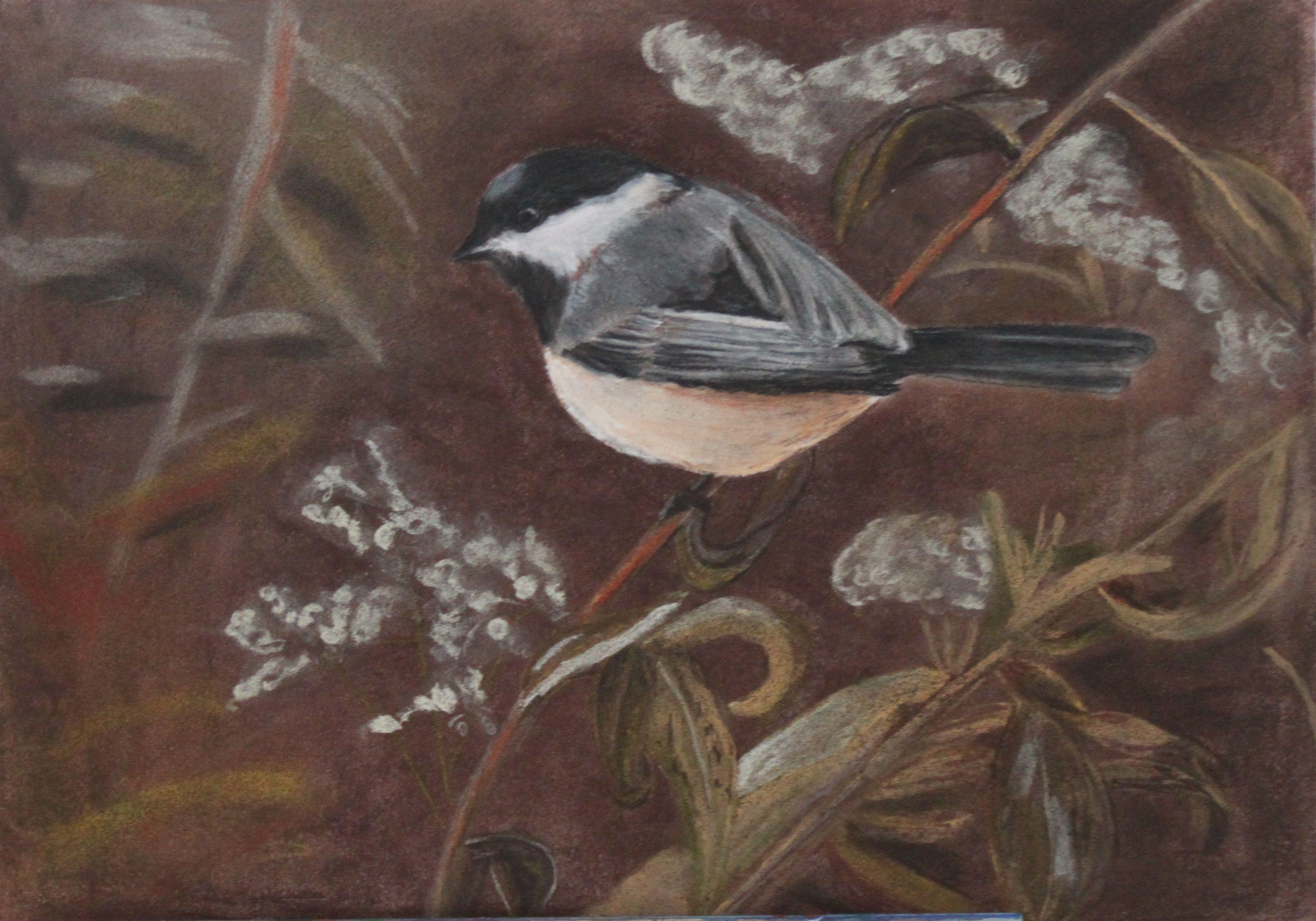 pastelkrijttekening  A3 papier  vogeltje