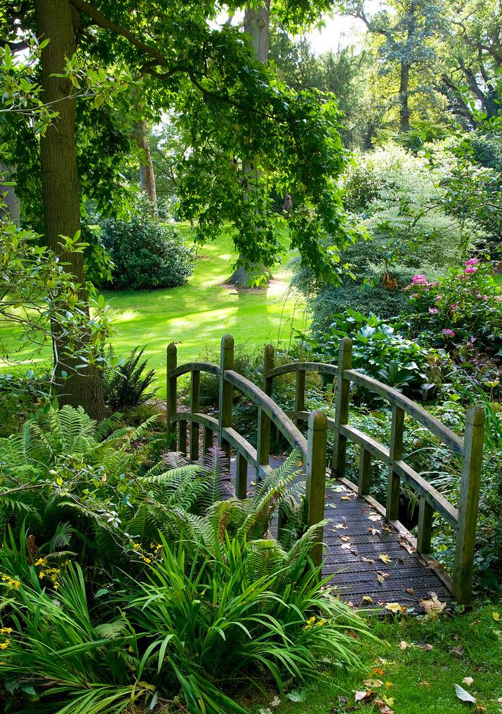 Petit pont dans un jardin | jardin, luxe, décoration d ...