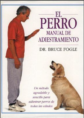 Tipos De Collares De Castigo Para Perros Manual De Adiestramiento Canino Pdf Muy Bueno Identi