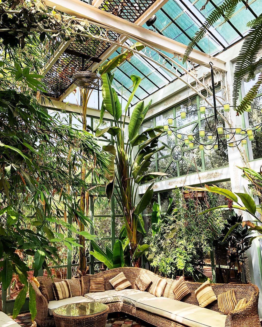 Beldi Country Club Marrakech On Instagram Jungle Greenhouse Beldicountryclub Bybeldi Beldicountryclub By In 2020 Greenhouse Cafe Cafe House Greenhouse Kitchen