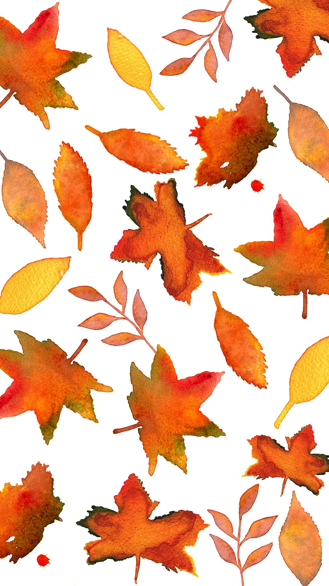 Fall Leaves In 2019 Autumn Leaves Wallpaper Iphone