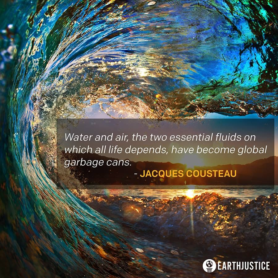 """""""Water and air..."""" Jacques Cousteau [900x900]"""