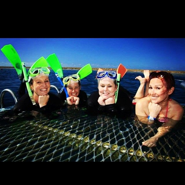 Yearbook posing on the reef hehe #cruisewhitsundays #whitsundays #airlie #airliebeach #reef #greatbarrierreef #reefworld #friends #me #queensland #qld #australia #aussie