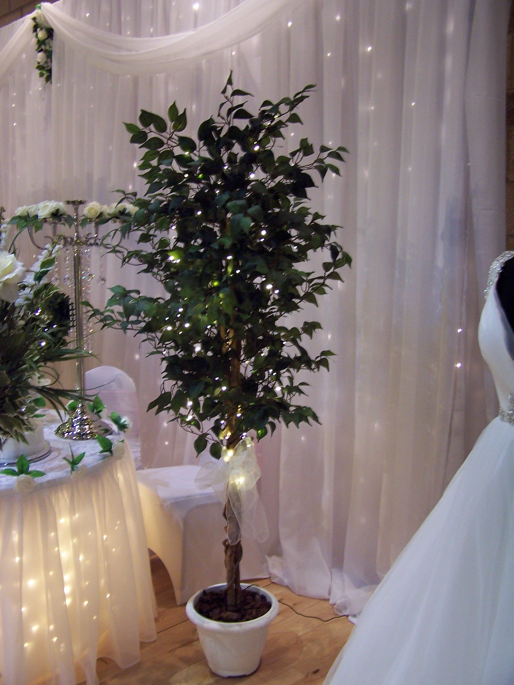 Led Lit Artificial Ficus Trees To Illuminate Your Wedding Venue Hire It From Www Limelightwedding Lights Wedding Decor Wedding Tree Decorations Wedding Lights