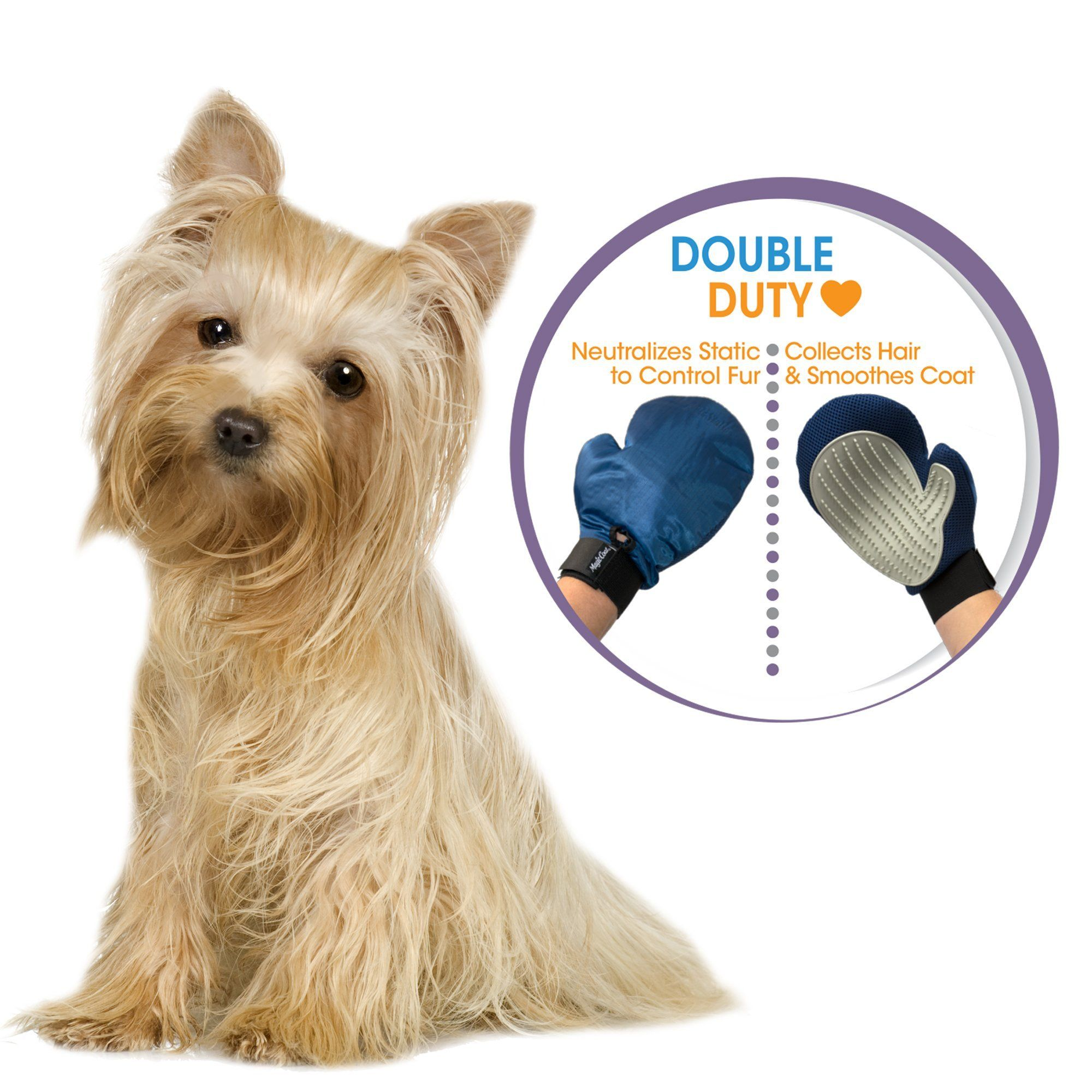 Four Paws Magic Coat Anti Static Love Glove 2 Lb Read More At The Image Link This Is An Affiliate Link Ca Cat Grooming Dog Grooming Dog Grooming Supplies