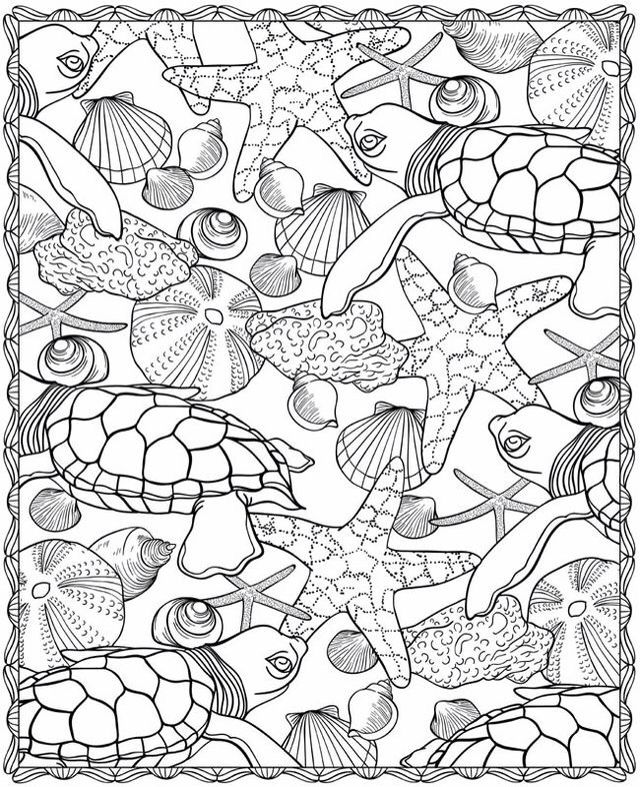 Turtle doodleADULT COLORING BOOK PAGESMore Pins Like This At