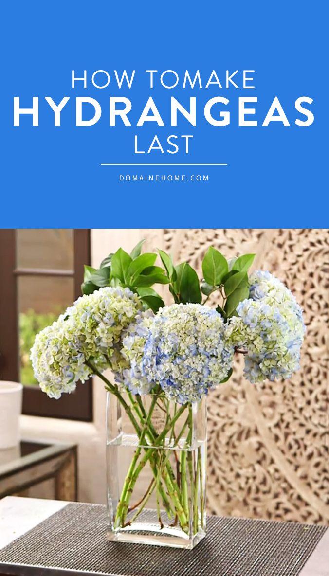 7 ways to make your hydrangeas last longer pinterest cut flowers 7 simple secrets for making cut flowers last longer in your home izmirmasajfo